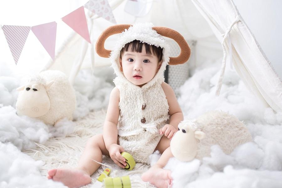 ひつじの着ぐるみをきてひつじに囲まれている赤ちゃんの写真